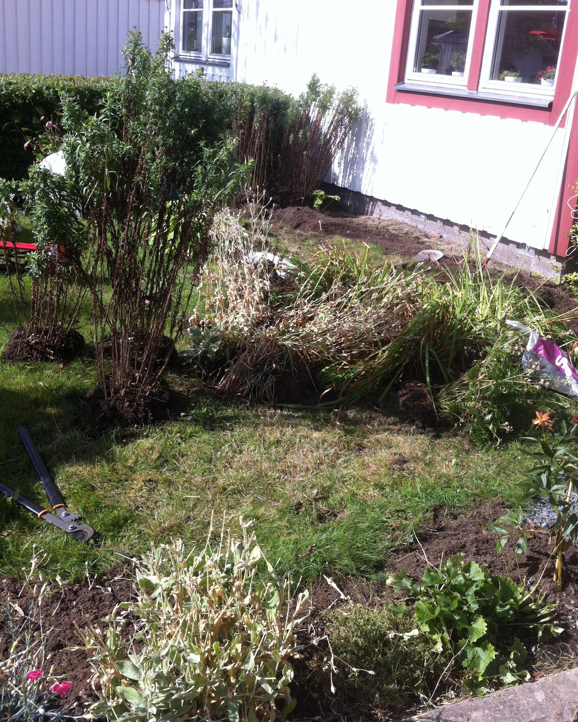 Malins trädgård och pyssel